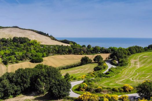 L'incroyable vue panoramique lors de l'ascension du Mont San Bartolo en vélo